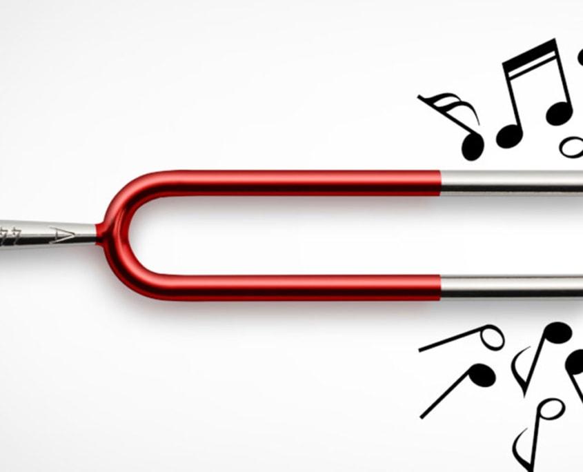 Unione Musicale, Camera delle Meraviglie
